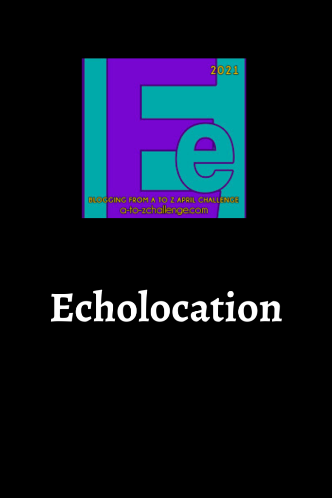 The blogging from a to Z April Challenge letter e is on the top center. Text below reads echolocation