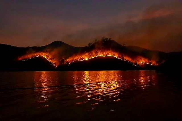 Photo description Image is of a wildfire in a  forest